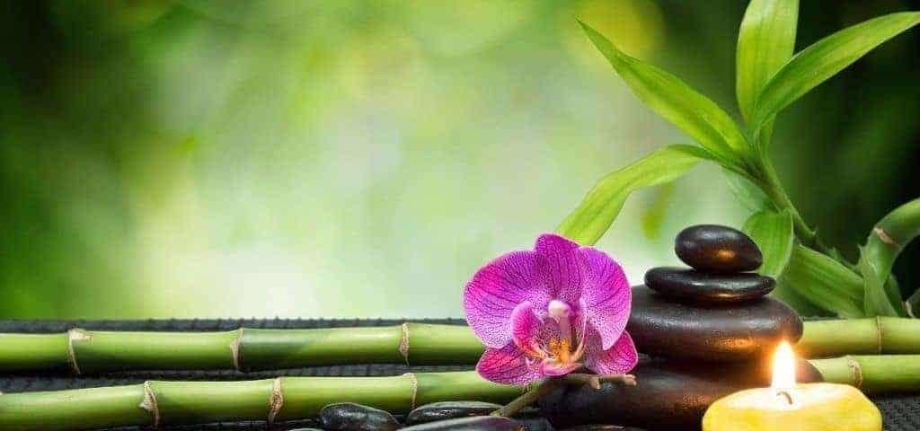 Enjoy Detox in Thailand